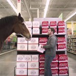 Man Picks Up A Wrong Beer, Then A Horse Shows Up And Does THIS!