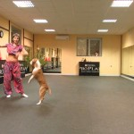 This Dog Is The Best Dancer You'll Ever See!